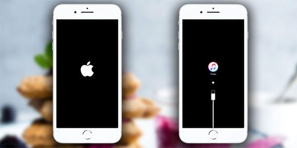 Kết nối iPhone 5S với công cụ iTunes